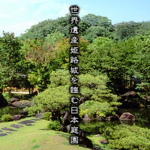 神戸・姫路サプライズプロポーズ 好古園