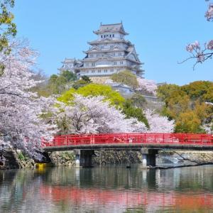 神戸・姫路サプライズプロポーズ 姫路城
