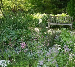 神戸・姫路サプライズプロポーズ 西宮市北山緑化植物園