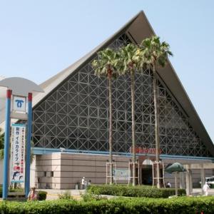 神戸・姫路サプライズプロポーズ 神戸市立須磨海浜水族園