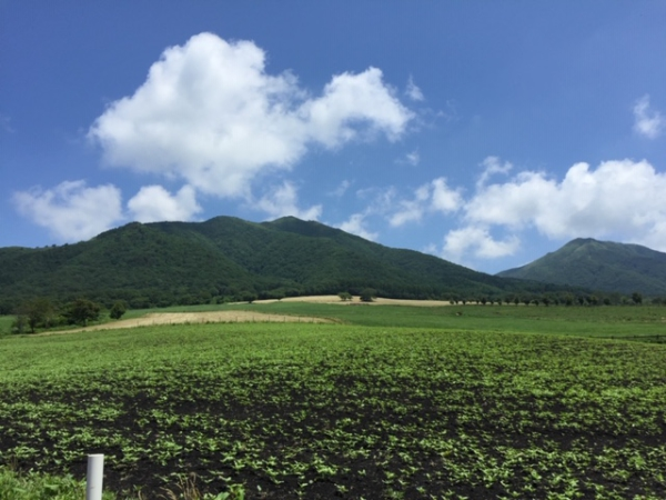 岡山のプロポーズスポット 蒜山高原